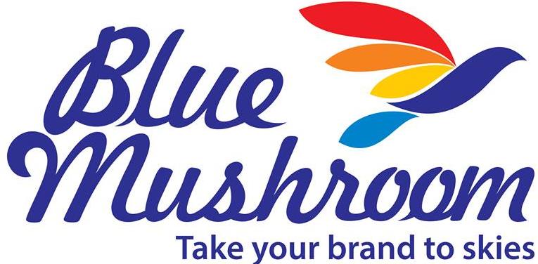 Blue Mushroom Infozone Pvt Ltd