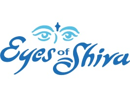 Eyes of Shiva Window & Gutter Cleaning