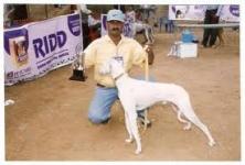 Dr. Thirumurthy Puppy Shop , Besant Nagar