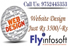 Fly Infosoft