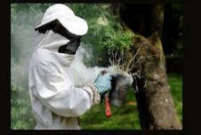 S3 Pest Control , Villivakkam